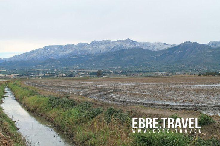 #Neu a les #TerresdelEbre. #Nieve en #TerresdelEbre. #Snow in #TerresdelEbre.