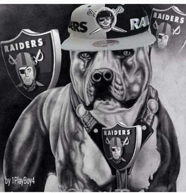 Image result for Oakland Raiders Hot Chicks