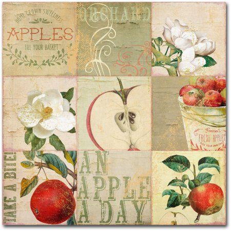 Trademark Fine Art Apple Blossoms Iii Canvas Art by Color Bakery, Assorted
