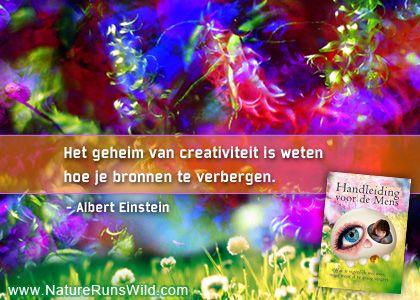 Het geheim van creativiteit is weten hoe je bronnen te verbergen. - Albert Einstein #filosofie NatureRunsWild.com