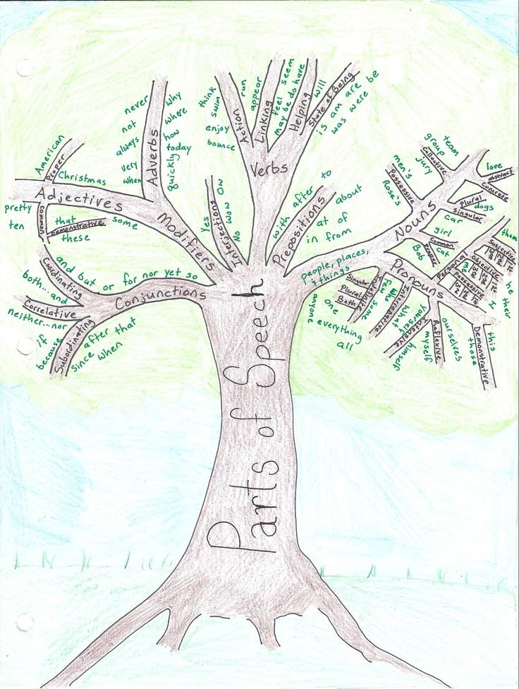 Week 1 English Grammar Parts of Speech Tree. Cool