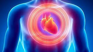 Here are four approaches For Cardiovascular Health Improvement.While all parts of the body add to the prosperity of a man, there are substantial frameworks that if not dealt with can bring about significant issues. One of that is the cardiovascular framework.So Cardiovascular Health Improvement is very much necessary. https://www.cardiomiracle.com/