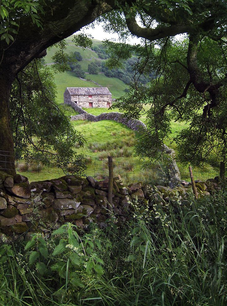 Yorkshire, England. Oh how I love this so typical English countryside.