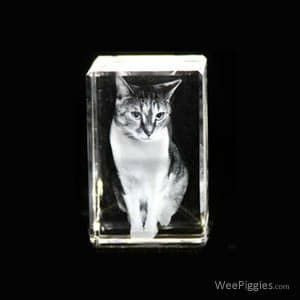 These are your memories in Crystal. We can take your favorite photos and laser them in 2D/3D into Crystal Blocks, Ornaments and LED Keychains. These crystals will never wear, tear or fade which makes them the perfect keepsake!
