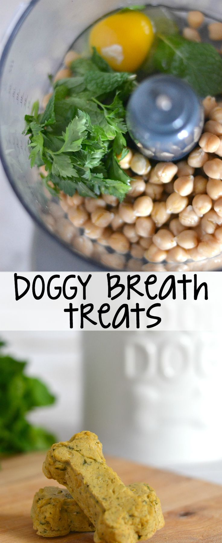 These homemade dog treats help stinky breath!
