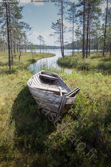 Suolammen vanha puuvene - Kainuu Kuhmo aurinkoinen erämaa heinäkuu hylätty lampi puuvene suo suolampi vanha vene