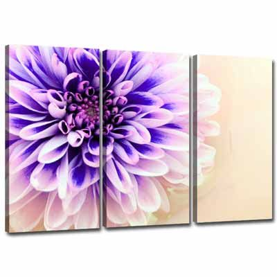 Google Image Result for http://www.wallfillers.com/product_images/Lilac-Canvas-Purple-Triptych-Floral-Canvas-0036PE06730T-Purple.jpg