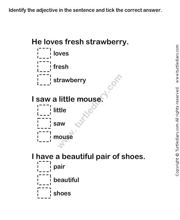 Describing Words Worksheet24