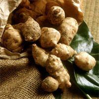 Ученыепоразились разнообразию витаминов и минералов, входящих в его состав. По содержанию железа, топинамбур значительно превосходит морковь, репу, картофель, свеклу. Кроме того, в состав гелиантуса входят калий, кальций, кремний, магний, натрий, фтор, хром и другие микроэлементы. Топинамбур содержит клетчатку, пектин, органические кислоты, жиры, белки и незаменимые аминокислоты (аргинин, валин, лизин, леицин и другие). Богата земляная груша и витаминами — В1, В2, В6, С, РР, каротиноиды.