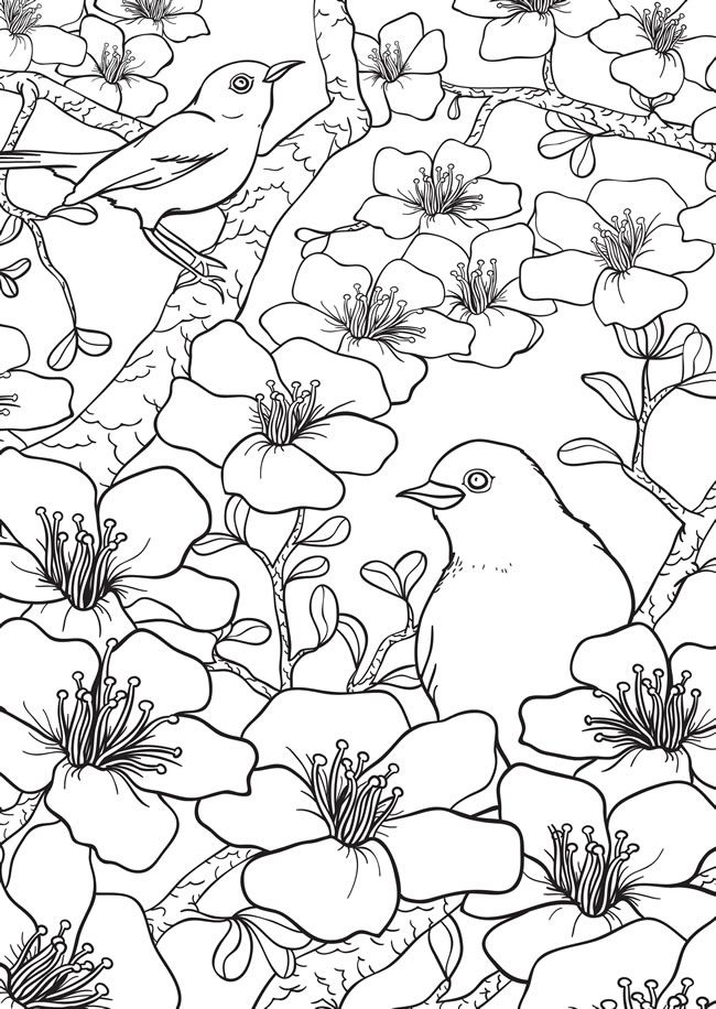 760 Best Images About Marys Coloring Book On Pinterest