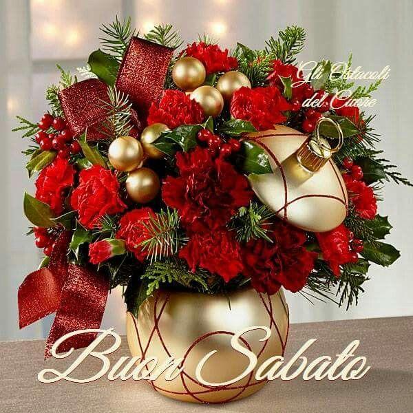 Best christmas images on pinterest flowers
