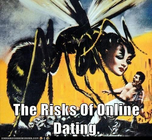 polish speed dating