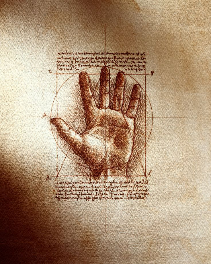 Leonardo Da Vinci, hand proportions study  via IronLight ~ https://twitter.com/iron_light