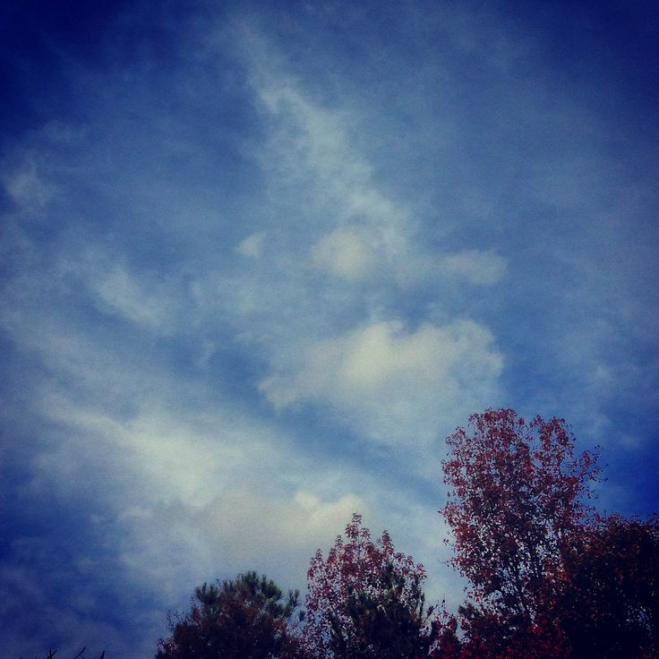 Cirrus Cloud this afternoon. Rain in forecast so hope to see some Nimbostratus clouds soon.