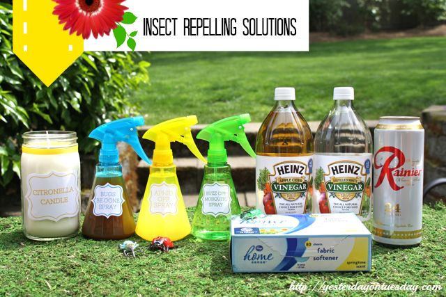 How to repel insects with natural items and stuff from around the house via http://yesterdayontuesday.com #insectrepellent #bugspray