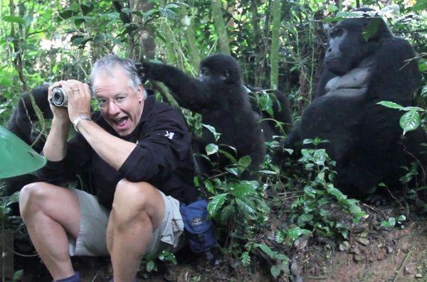 One Man's Incredible Encounter With A Wild Mountain Gorilla [VIDEO] - Enpundit