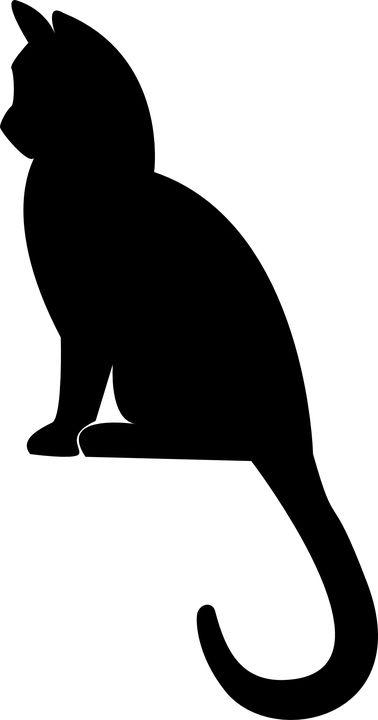 Gatinho, Sentado, Silhueta, Gato, Preto, Branco, Pet
