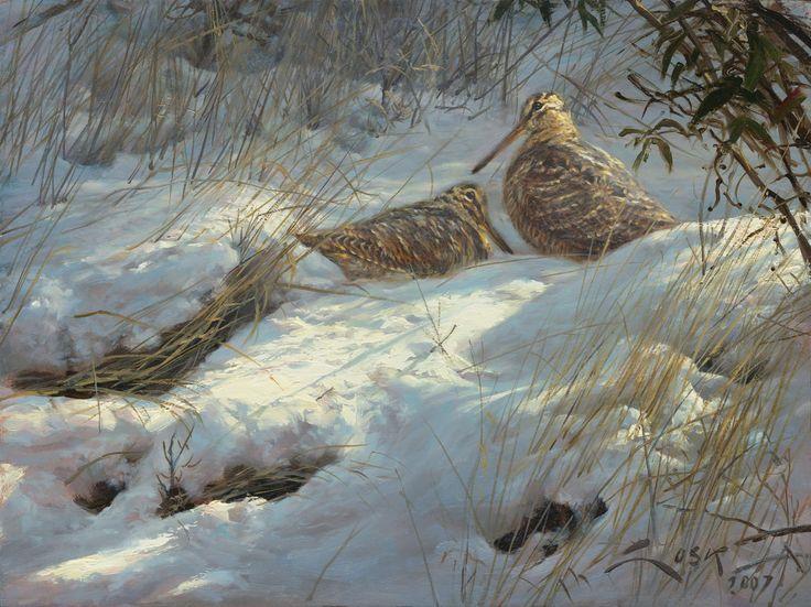 "Woodcocks Fine print on canvas. - ""Woodcocks in the snow"" - Woodcock painting 35 x 26 cms."