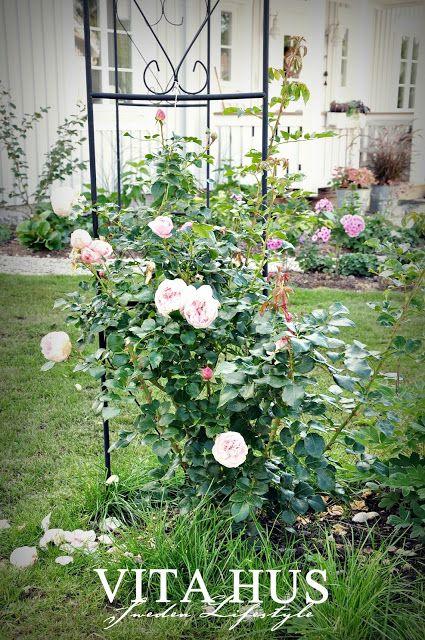 Septembergarten