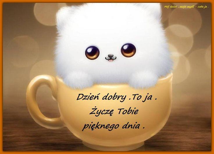 Dzień dobry. To ja. Życzę tobie pięknego dnia #dziendobry