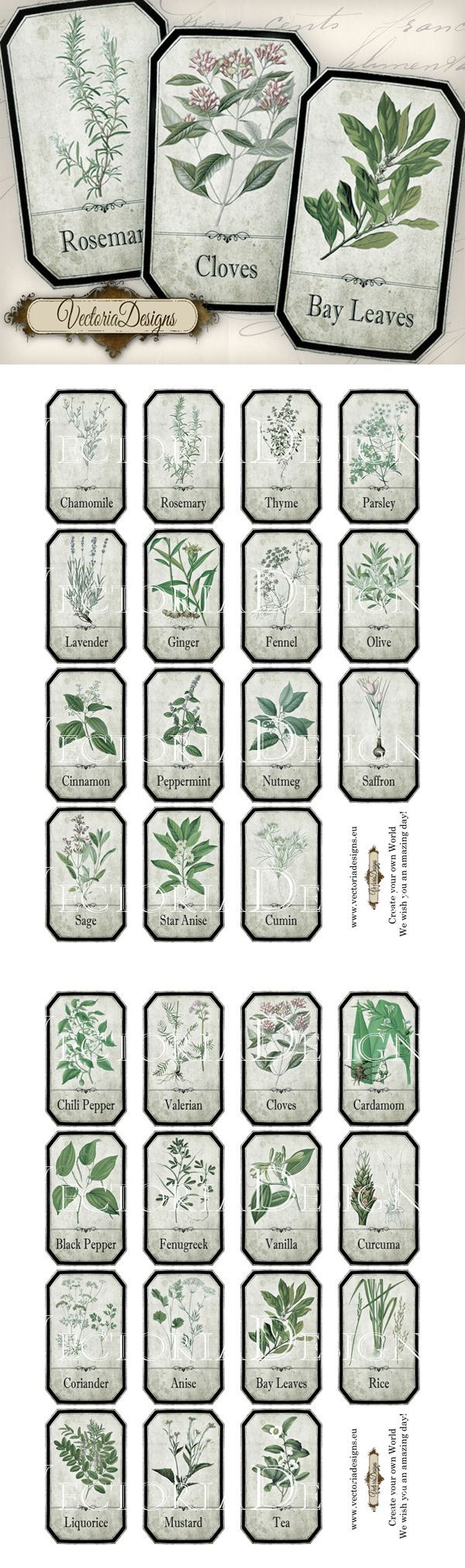 Printable Shabby Herbal Labels by VectoriaDesigns.deviantart.com on @deviantART | herbology, herbalism, healing plants, herbal medicine Más