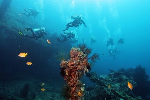 Spectacular bonus: The USAT Liberty shipwreck, which has been there since 1942 after it was torpedoed by a Japanese subm...