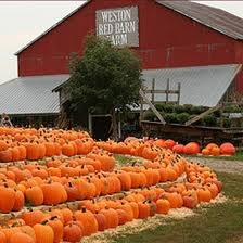 Red Barn Farm in Weston, MO. So excited to go this fall!! :)