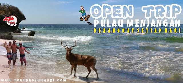 open trip pulau menjangan, open trip menjangan, paket wisata pulau menjangan murah, trip pulau menjangan, paket tour banyuwangi murah