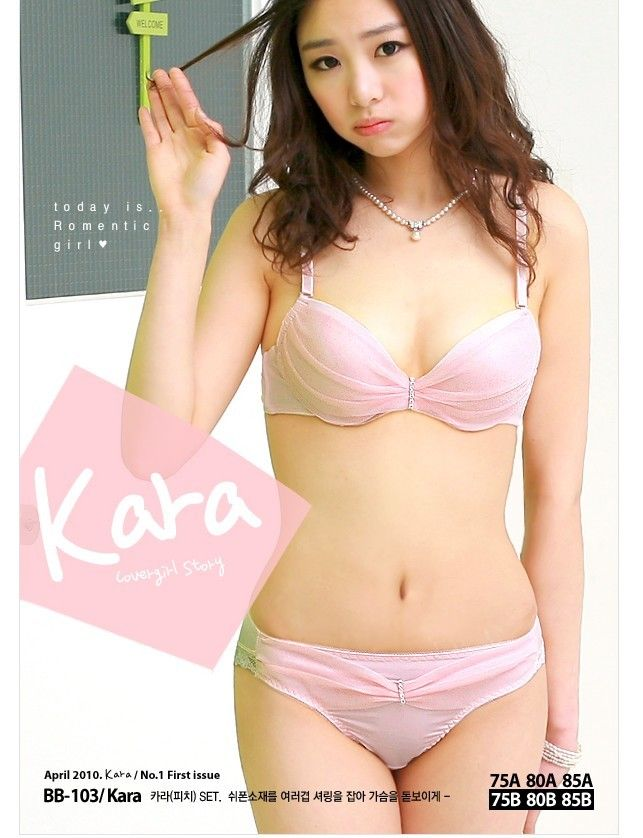 Koreans sexy bra and panties galeries consider, that