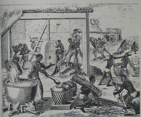 El Cimarronaje y los Palenques en la América Colonial - temporamagazine.com
