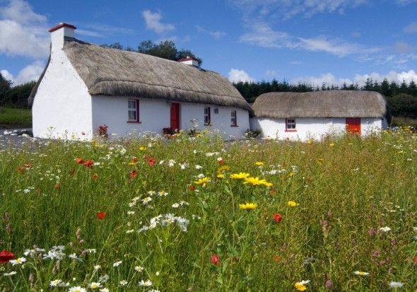 Traditional cottage, Northern Ireland
