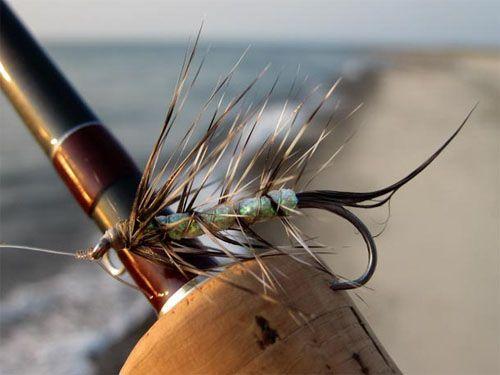 Killer Shrimp - How to tie fly, Fly tying Step by Step Patterns & Tutorials