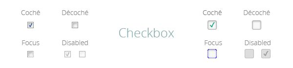 personnaliser-aspect-boutons-radio-checkbox-css