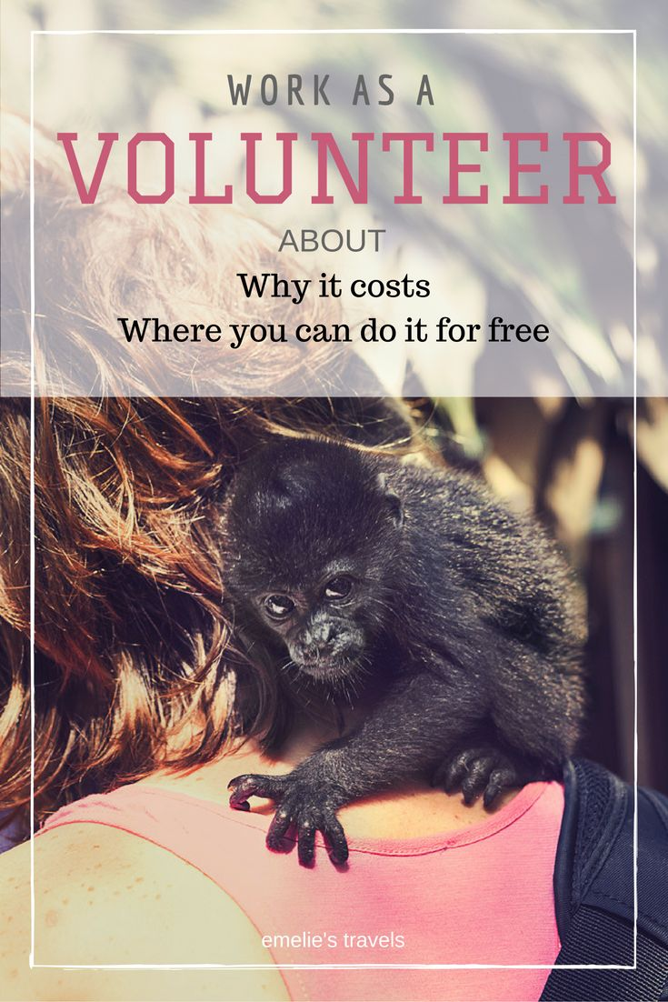 WORK AS A VOLUNTEER | why should you pay for it? | In this post I discuss why it costs and where you can volunteer for free.