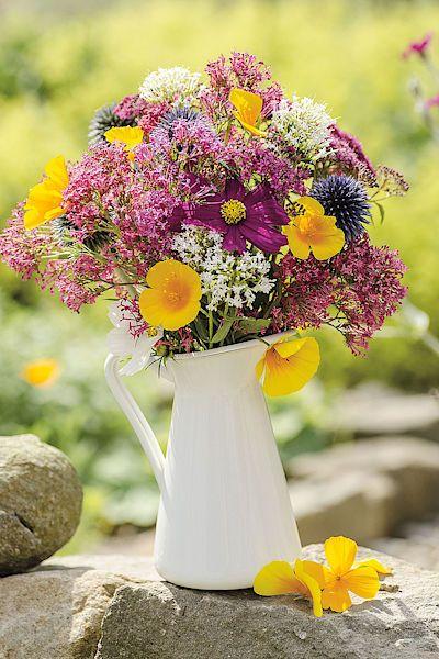 Načechraná kytice. Pestrá směs zkrášlí každou zahradní party i byt. Ve váze vydrží asi týden.