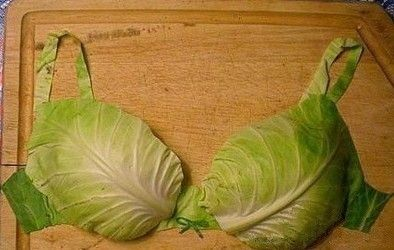 Cabbage bra: Lettuce Bra, Stuff, Cabbages Bra, Funny, Head Cabbages, Humor, Arm, Edible Art, Food Art