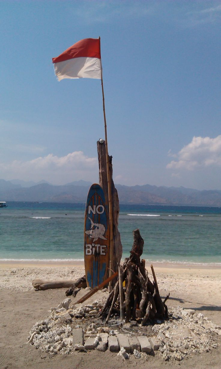 On the beach on Gili T Island in Indonesia.  Obviously we are just educating our sharks properly in Australia.