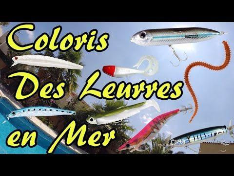 Coloris des leurres en mer pour le loup (bar), la dorade, la sèche et le calamar  #calamar #coloris #dorade