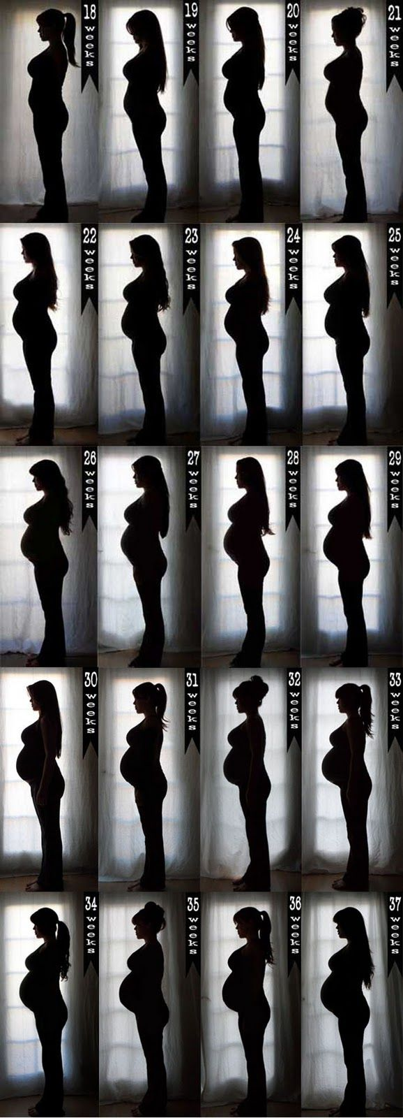Cute silhouette belly photos, I would bend my elbow...looks like she doesn't have arms