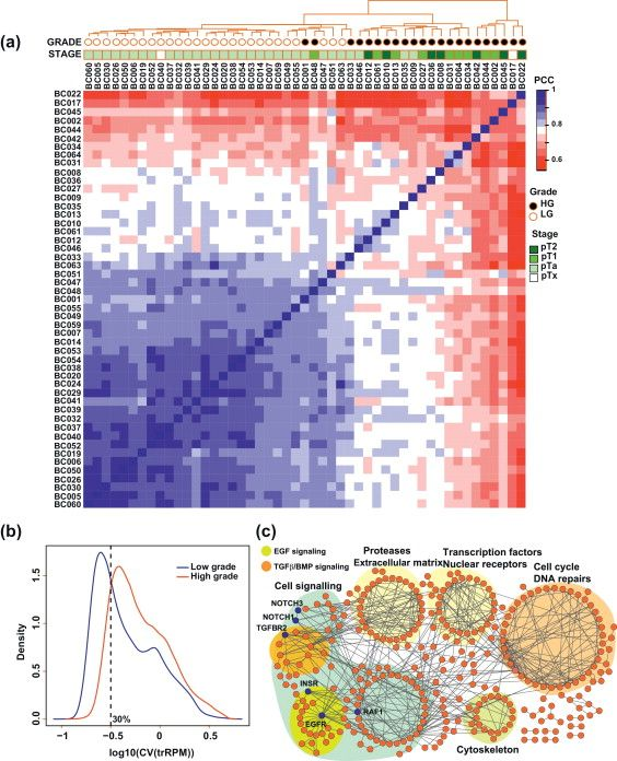 Next-generation RNA Sequencing of Archival Formalin-fixed Paraffin-embedded tissue