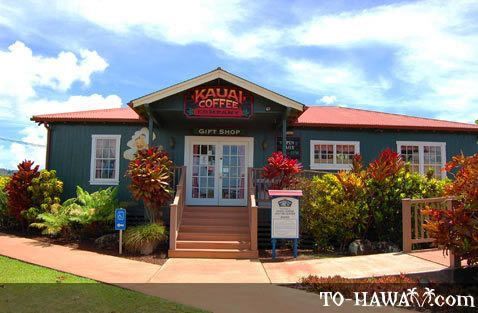 Kauai Coffee Company is located in Ele'ele on Kauai's south shore. This is the largest coffee grower in Hawaii and the US. You can sample the entire line of 100% estate-grown coffee.  There is a 1.6 km walk through a coffee field and a self-guided garden tour.