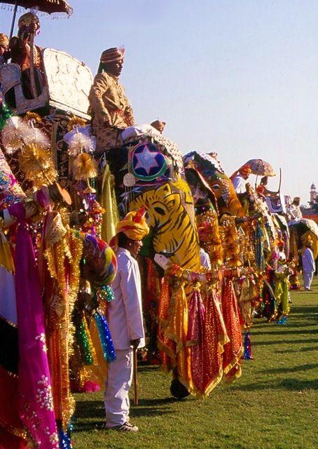 Elephant Festival. Jaipur