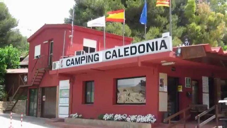 Camping Caledonia en Tamarit (#Tarragona ), en pleno corazon de la #Costa Dorada. Un camping para gozar del #caravaning y de los diferentes #bungalow que dispone. A menos de 1 km de la playa de #Tamarit