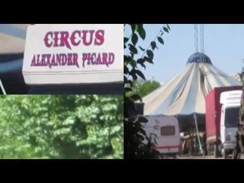 Circus Alexander Picard to Oravița
