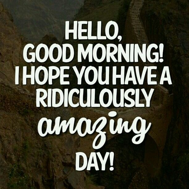 Have a Amazing day