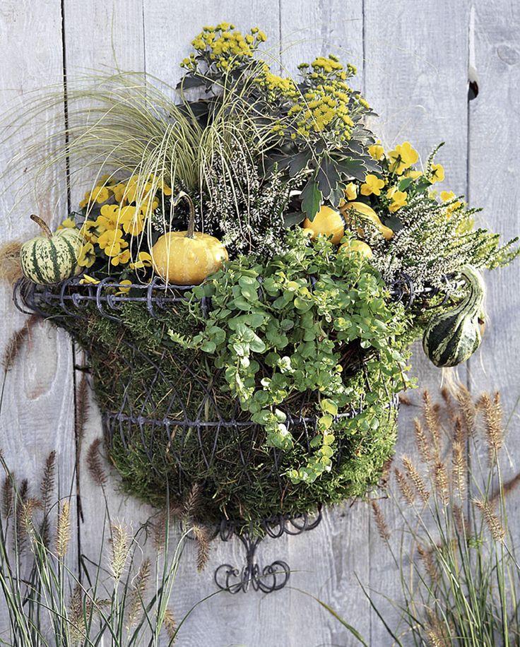les 69 meilleures images du tableau jardini res et pots de fleurs sur pinterest balcons. Black Bedroom Furniture Sets. Home Design Ideas