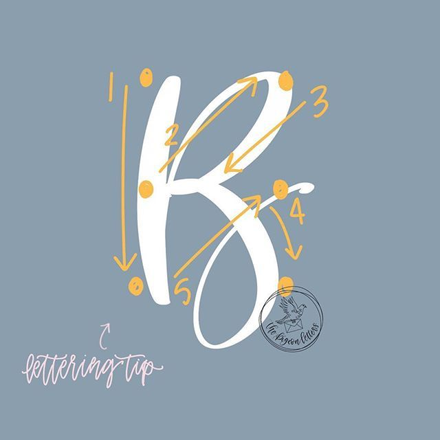 108 best Lettering \ Modern Calligraphy images on Pinterest - character reference letter for rental