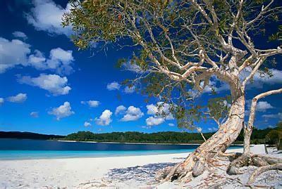 The AMAZING lake mckenzie on Fraser Island. Take me back....
