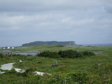 What Evidence is there for Norse Landings in North America?: Vista at Anse aux Meadows, Labrador