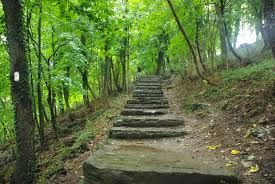 Appalachian Trail to Loudoun Heights Trail Loop in Harpers Ferry, WV
